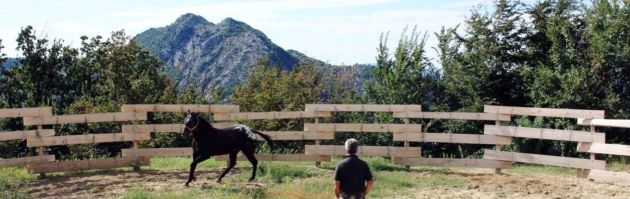 La Corte del Re <span>Horses</span>